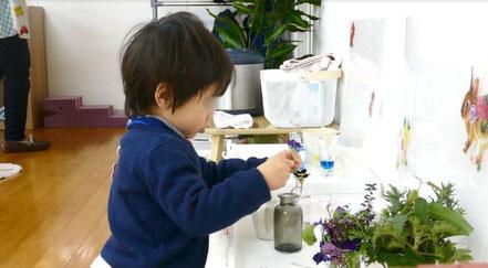母子分離コースの未就園児(2歳児)がモンテッソーリ活動で、集中して生け花に取り組んでいます。