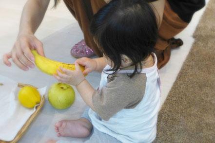 モンテッソーリの活動の「モノと名前のお仕事」で、手の感触でバナナを確認している1歳前の乳幼児