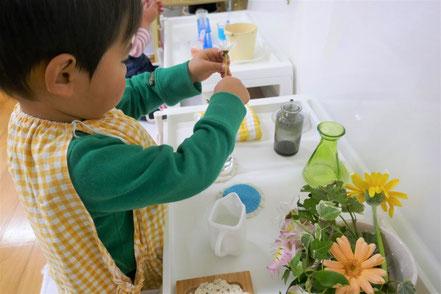 モンテッソーリの個別活動で2歳児が生け花の活動を楽しんでいます。