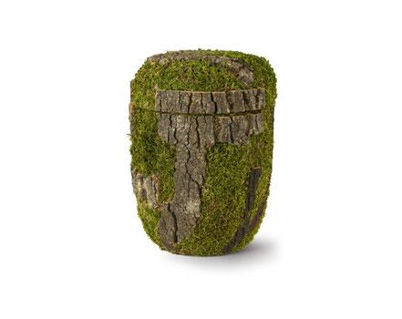 Holzurne in Baum-Optik mit Moos