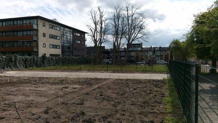 Buurtmoestuin - de Vliegertuin - Zuilen - Utrecht