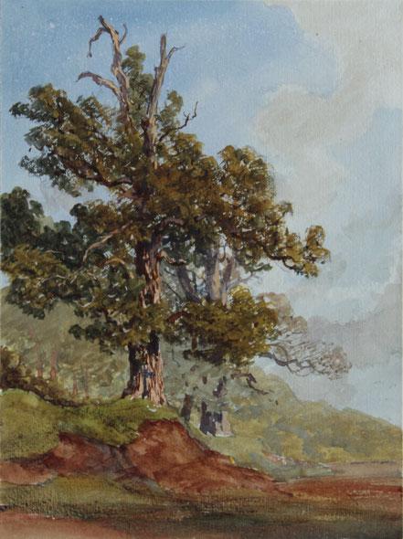 Karl Lang Archiv Büsingen, Thomas Burton Watkin Forster TBWF Aquarell watercolor