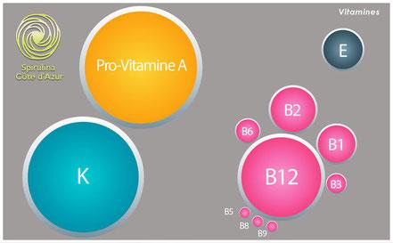 Schema de la composition en vitamine de la spiruline