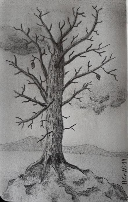Herbst, Herbstbaum, Landschaft, Bleistiftzeichnung, Christian Niklis