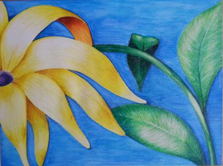 Stillleben, Blume, Blüte, Blätter, Aquarellkreide, Christian Niklis