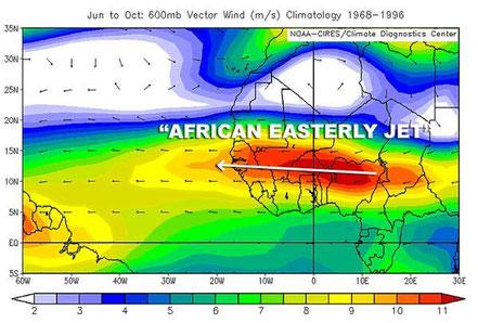 Abb. 1 | Durchschnittliche Windgeschwindigkeit (m/s) von Juni bis Oktober in 600 hPa | Bildquelle: NOAA-CIRES/Climate Diagnostics Center