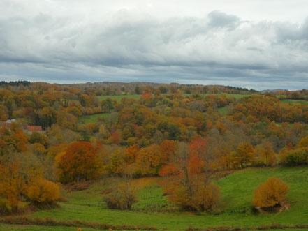 Terrasse enherbée près du sauna, dominant la vallée de la Tardes