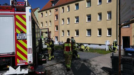 Foto: Medienportal-Grimma