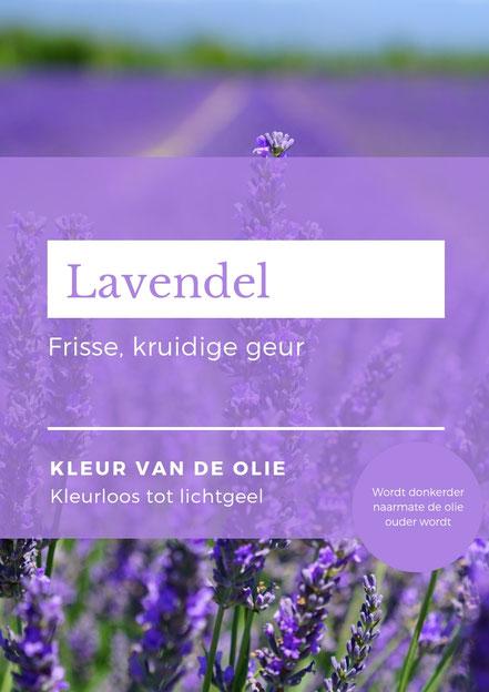 Lavendel olie. Afbeelding uit het mini e-book spirituele aromatherapie voor het vergeten kind.
