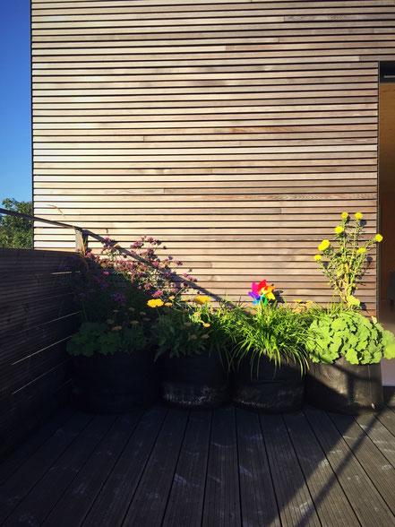 Terrasse plein Sud avec bacs en feutre et vivaces et graminées - Coach Jardinage