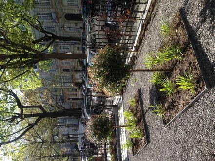 Architecte paysagiste Bruxelles - Jardin avant Bruxelles