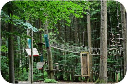 klatrepark harzen