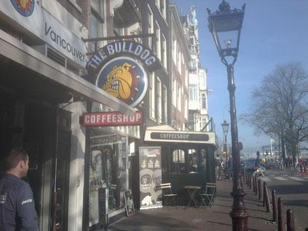 Coffeeshop Weedshop Bulldog Amsterdam