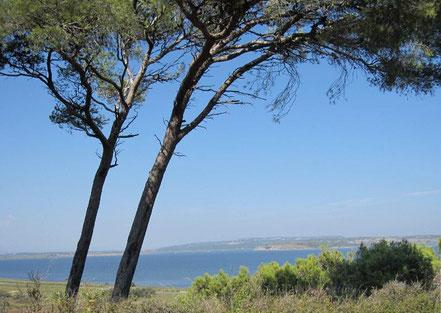 l'Ile de Sainte Lucie, ballade nature, Narbonne, Port la nouvelle avec rc vtv narbonne