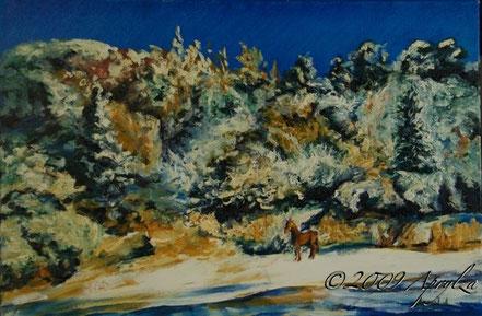 0038-le champ à la source de St Marc Jaumegarde, 60/40cm oil on canvas