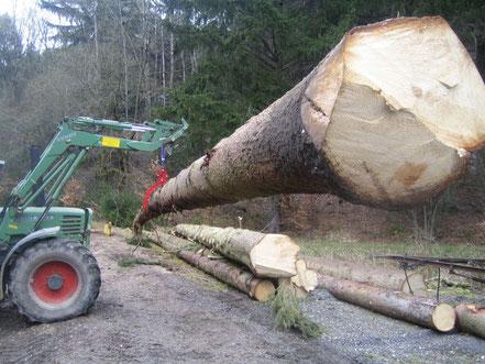 Forstwerkzeuge