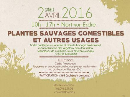 La Rigole - Événements et formations - Atelier - Plantes sauvages comestibles - 02 avril 2016 - Nort sur Erdre.