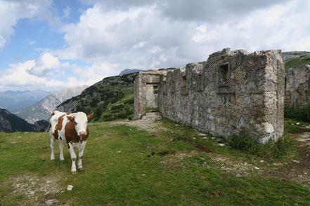 Festung auf dem Strudelkopf