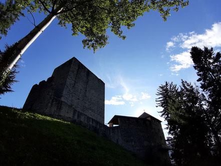 Schloss Goyen