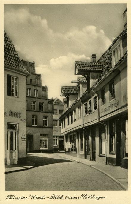 Katthagen - Beliebtes Fotomotiv