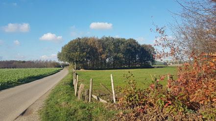 Dorf Vernum nahe Gelder am Niederrhein