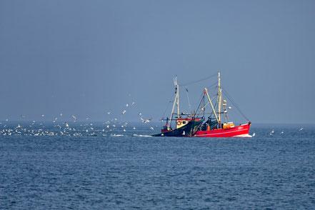 Fischer auf dem Meer, gesehen von Wandelsinn
