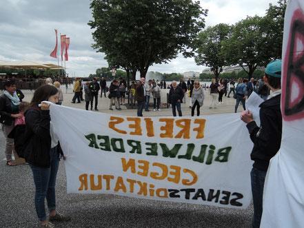 Wat mutt dat mutt: Freies Billwerder gegen Senatsdiktatur (Demo 2019)
