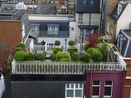 Well-manicured rooftop.