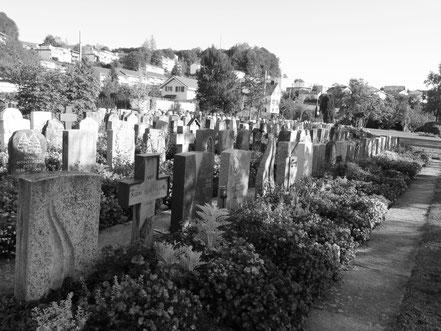 Friedhof Wald ZH