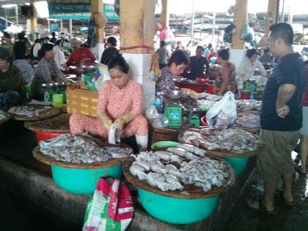 Xe Moi Markt
