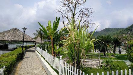 Gartenanlage des Resort