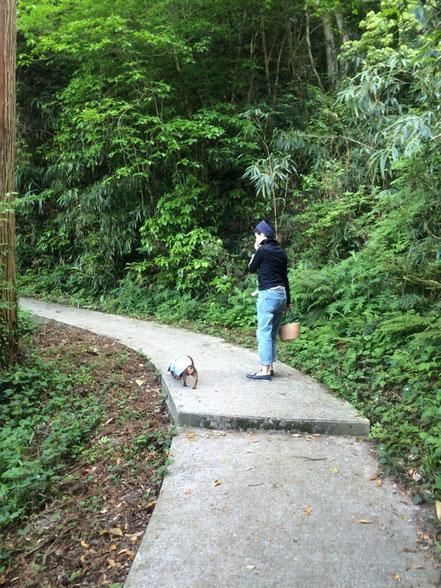 小さい頃行ったきりで、何十年ぶりの五本松公園。結構歩いた‼︎