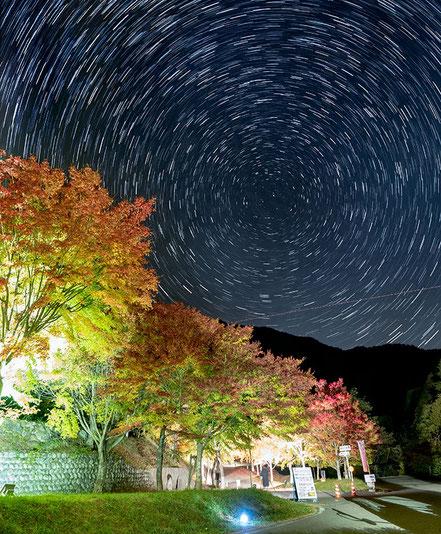 【入選】百瀬 栄「紅葉と共演」