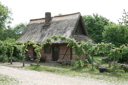 Ferienhaus im Leonorenwald