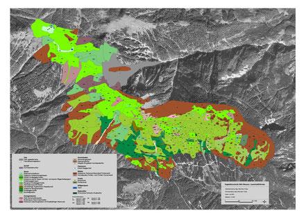 Vegetationskarte, Mussen, Gailtal, Lesachtal, Kärnten. Naturschutzgebiet, Theiss