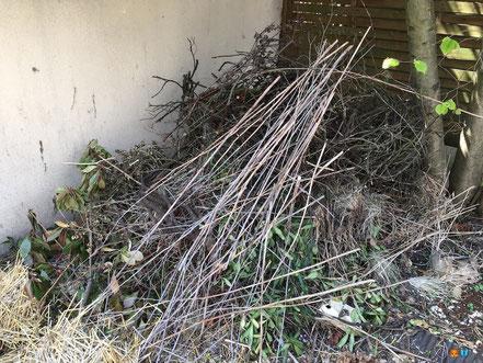 Un tas de bois dans mon jardin naturel