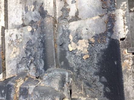 瓦の塗膜劣化の状態。