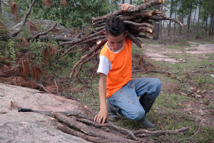 Sael loading up his collected firewood
