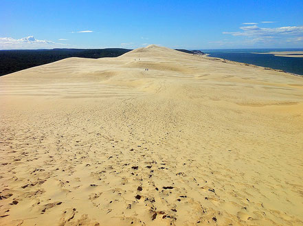 Sommet Dune du Pilat