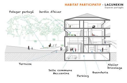 Coupe du projet d'habitat participatif à Anglet - Espaces partagés