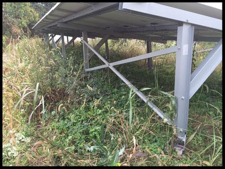 野立て太陽光発電に茂る雑草