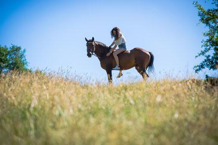 Romain Blanchon photographe en Rhone Alpes Auvergne entre Montbrison et Saint Etienne 42 shooting animaux chiens cheval mariage grossesses couple photos de famille