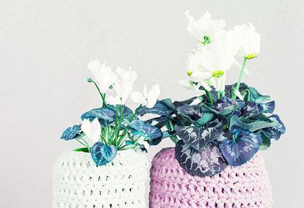 Altmodisch umhäkelte Blumentöpfe mit Alpenfeilchen. Ironisches Foto für ein Geschenk. Coaching schenken macht mehr Sinn.