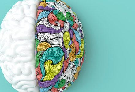 Weiße und bunte Gehirnhälfte. Forschungserkenntnisse für's Coaching nutzen.