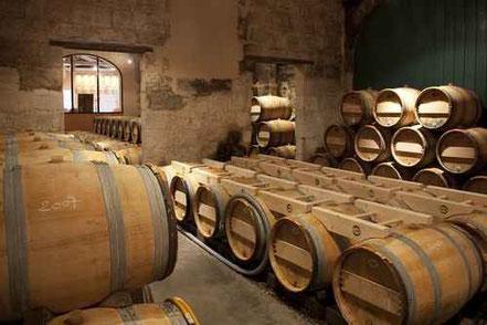 Conservation des vins et température des caves - Agralis
