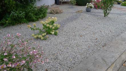 """Kiesgarten oder """"Steinwüste""""?"""