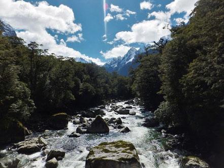 Auf dem Weg zum Sound: Tutoko River mit Ausblick auf den höchsten Berg des Fiordlands: Mount Tutoko (2723m)