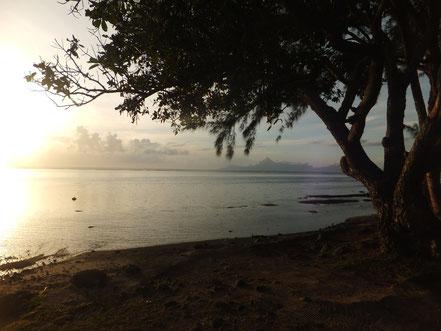Abendlicher Blick in Richtung Mo'orea