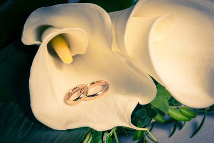 servizio fotografico matrimonio bologna