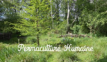 stage initiation permaculture, permaculture, OSBD, psycologue, accompagnement, permaculture humaine, nature, ressourcement, communication consciente, communication non violente, la roche sur yon, vendée, pays de la loire